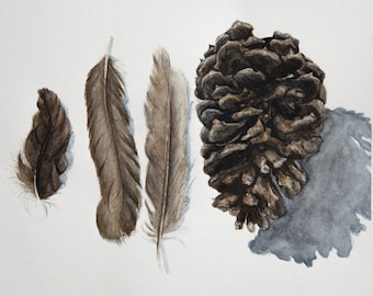 Feathers And PINECONE Original WATERCOLOR PAINTING Wall Art