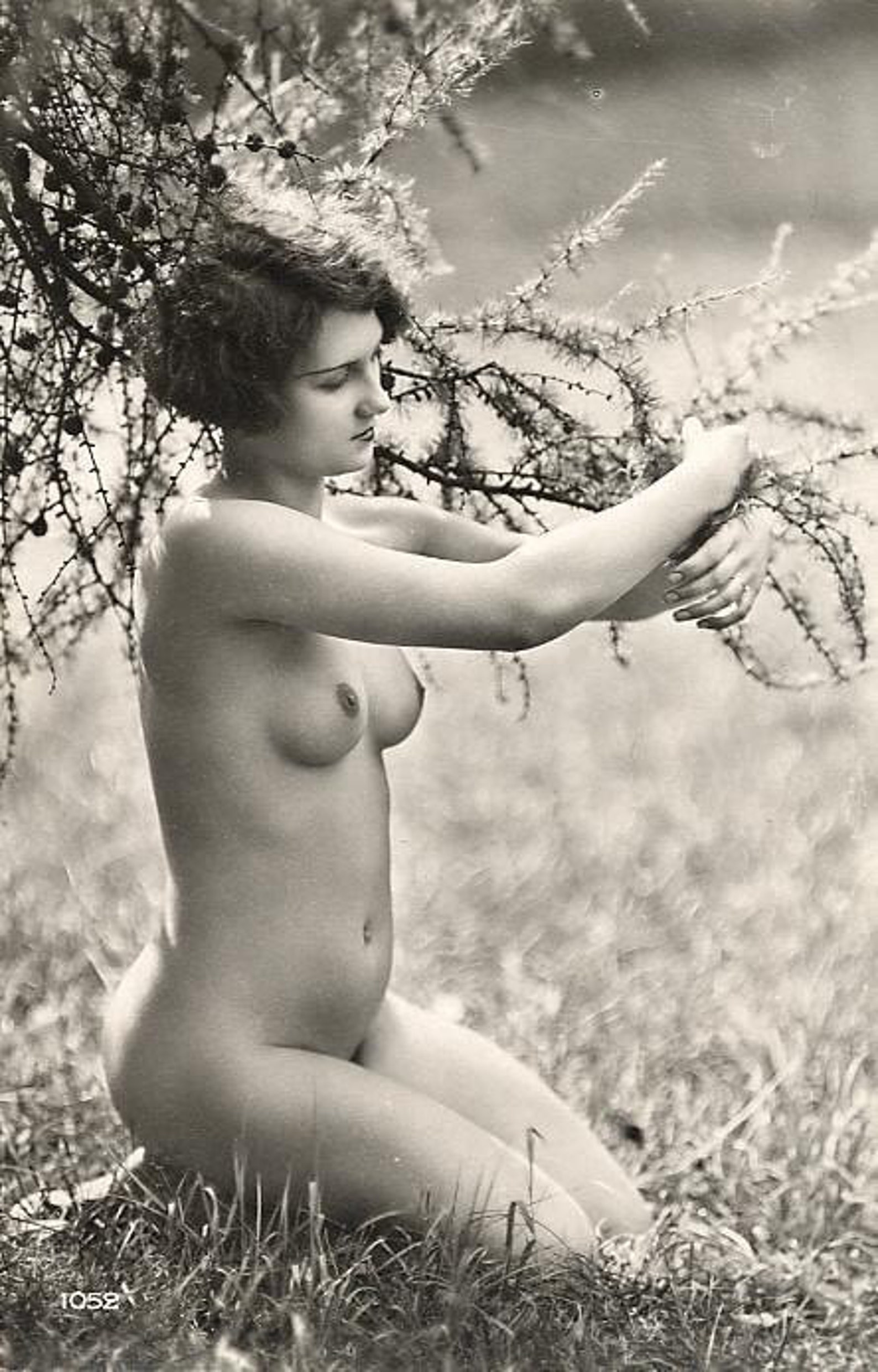 Was Lillian Gish A Lesbian Free Porn Galery, Hot Sex Pics
