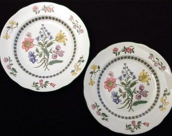 Spode Summer Palace ImperialWare,  Two 7 1/2 inch Plates.