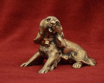 Bronze Cocker Spaniel