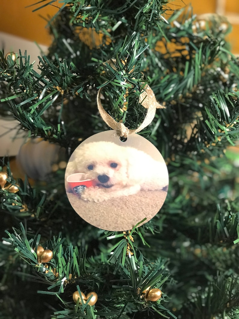Pet dog cat Christmas personalized photo ornament with name and year Custom animal Christmas ornament w picture year personalized ornament
