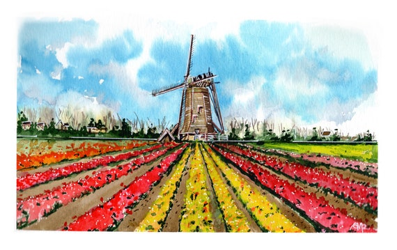 Tulips and the Windmill