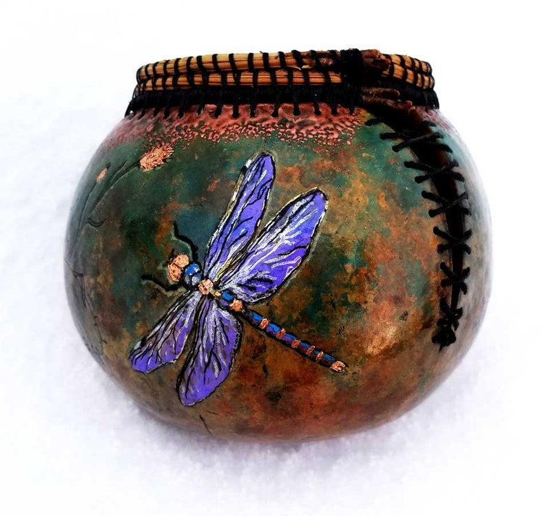 Dancing Dragonfly image 0