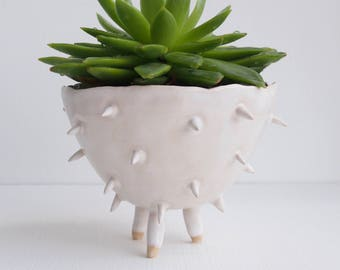 Handmade white ceramic spiky cactus planter, ceramic cactus planter, white plant pot, succulent planter, flower pot, white pottery planter
