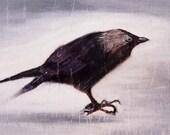 Black bird giclee print, crow print, bird archival print, black bird art, gothic gift, dark home, crow painting, goth gift, blackbird print