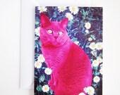 Pink cat birthday card, british blue cat birthday card,  cat art card, british blue cat card, british short hair card, cat lady card