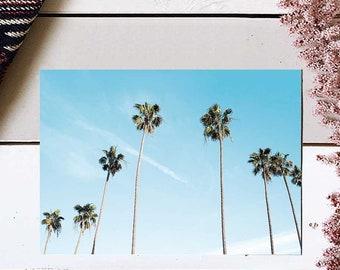 Palm Tree Print, Palm Tree Photography, Palm Tree Art Print, Tropical leaf print, Tropical Wall Print, Beach Art Print, Palm Tree Wall Art