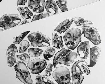 Skull Love Black