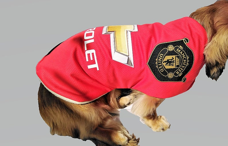 Manchester United Dog Football Shirts Various Sizes Years Waterproof Personalised For Free