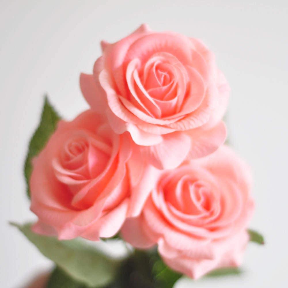 1 Stems Real Touch Rose Blush Pink Rose Artificial Single Etsy