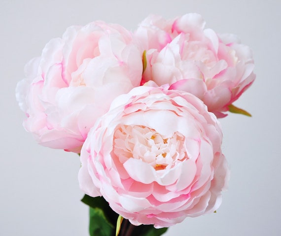 Silk peoniespink peonieslight pink bridesmaid peonies etsy image 0 mightylinksfo
