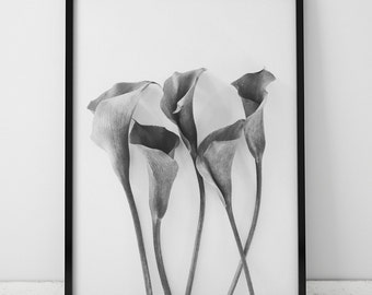 Black and White Calla Lily Print, Minimalist, Black and White Wall Art, Printables, Instant Download, Minimalist Print, Calla Lilies, Flower