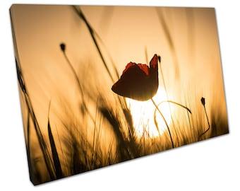 stunning setting sun over wild poppy wild meadow art Ready to Hang Canvas X1245