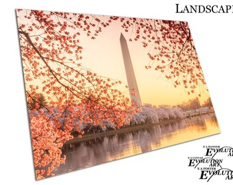 Washington Memorial during the Cherry Blossom Festival Poster Print X1430