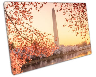 Washington Memorial during the Cherry Blossom Festival Ready to Hang X1430