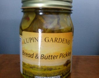 Bread & Butter Pickles. 16 oz.
