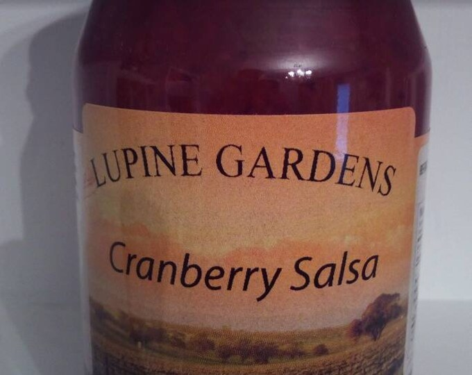 Gourmet Cranberry Salsa. 17 oz.