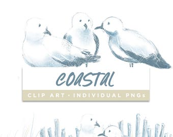 Coastal Collection Clip Art // Seagull Coast Beach Planner Stickers Clipart Digital Graphic Illustration Scrapbooking