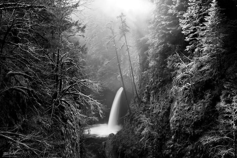 metlako falls photo Contemplation nature landscape photography print photo oregon waterfall forest waterfalls wall art