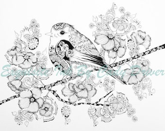 TWO VERSIONS! Coloring Page Bird Instant Download!