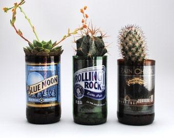 Beer Bottle Glasses - Planters (Bottle only)