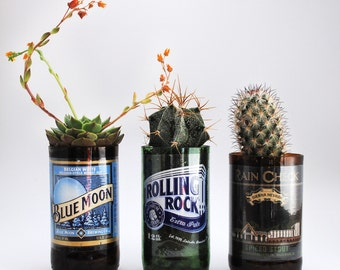 Beer Bottle Glasses - Planters (Bottle only)