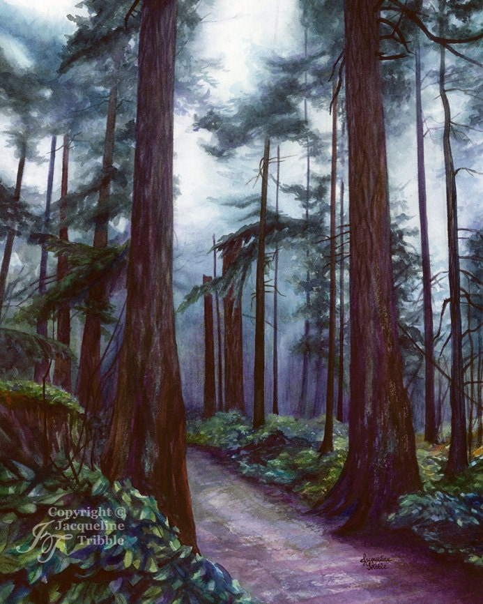 Northwest Watercolor Print Old Growth Forest Watercolor