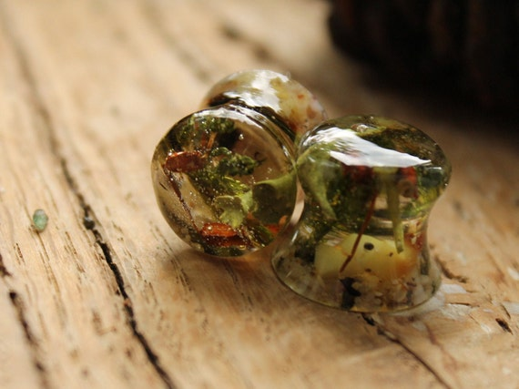 real moss plugs green yellow jewelry Real plant plug and tunnel unique Teardrop plugs Tear Drop gauges dropshaped tunnels terrarium earrings