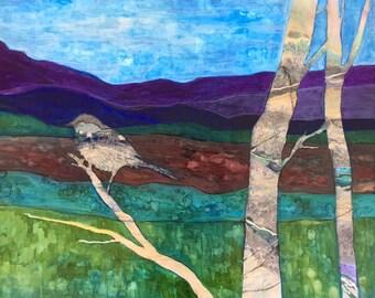 Northern chickadee