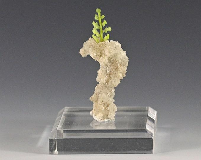 Bonsai Tree Gift Decorative Art Authentic Fulgurite Lightning Sand Vase