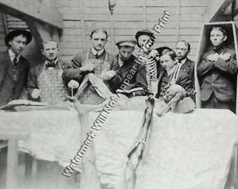 A81 FREAKY BIZARRE STRANGE ODD Circus VINTAGE PHOTO WEIRD Circus Act Pic Image