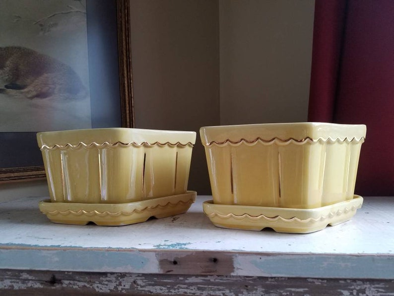 Yellow pottery planters in a beautiful butter yellow glaze image 0