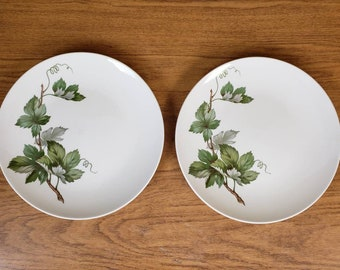Edwin Knowles grapevine Dinner Plates x 2246 0 green leaves and stem