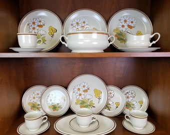 Hearthside Floral Expressions Summertime set of 20 stoneware vintage dishes with white flowers