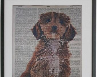 spoodle art dictionary art cockapoo gifts Cockapoo Dog Print No.138