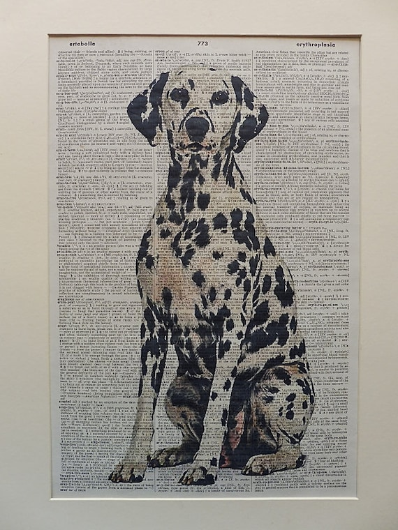 Dalmatian dressed as human Print dictionary page art print vintage gift book F32