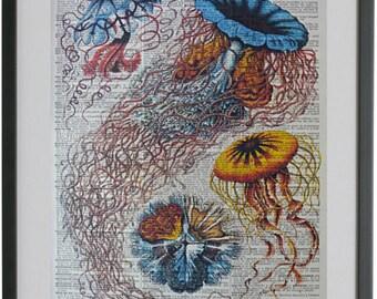 Jellyfish Print No.226, jellyfish wall decor, jellyfish decor, jelly fish decor, girlfriend gift, wife gift, ocean print, nautical