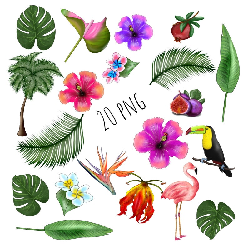 jungle clipart Tropical Clipart Digital Floral Clipart Flamingo Clipart Tropical flowers clipart Hawaii Clipart Paradise Beach Clipart