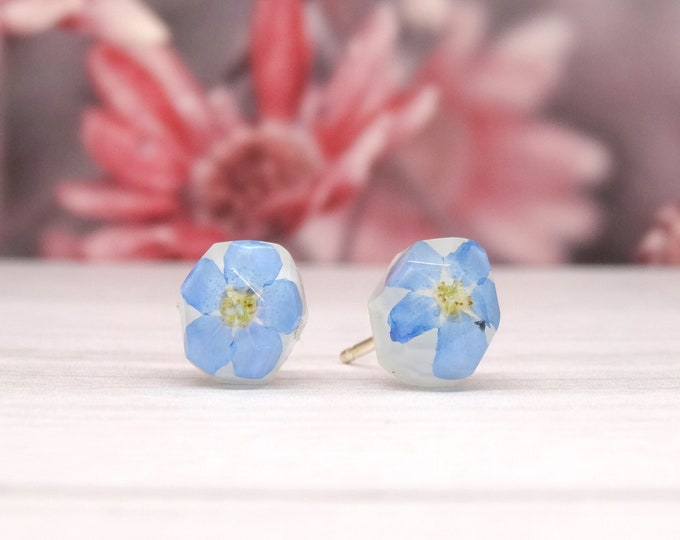 Featured listing image: Forget me not earrings, real flower earrings, real flower jewellery, handmade silver earrings, gift for her, pressed flower jewellery