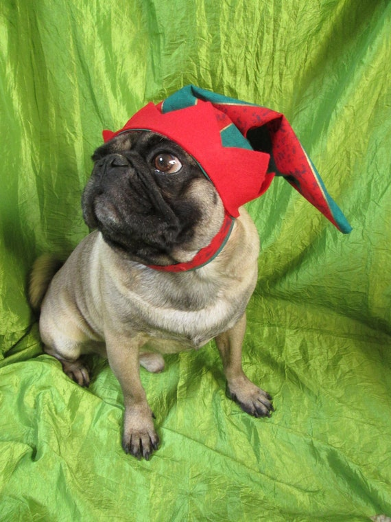 Christmas Hats For Dogs.Christmas Elf Hat Christmas Hat For Dogs Dog Elf Hat Dog Fashion Dog Christmas Hat Xmas Pug Hat Xmas Dog Costume Dog Clothing Puppy