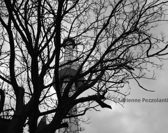 Brooklyn Astrotower Astroland Coney Island Beach Photography Black & White Trees Photo Images New York NYC Photograph