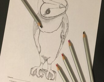 Greyscale Barn Owl Coloring Page, Digital Download
