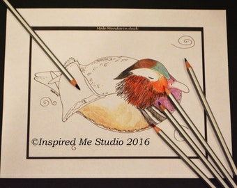 Male Mandarin Duck Single Digital Adult Colouring Page