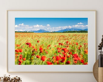 Poppy Field Photography, Poppies, Mountain, Alps, Switzerland Photography, Summer Wall Decor, Countryside, Red and Yellow
