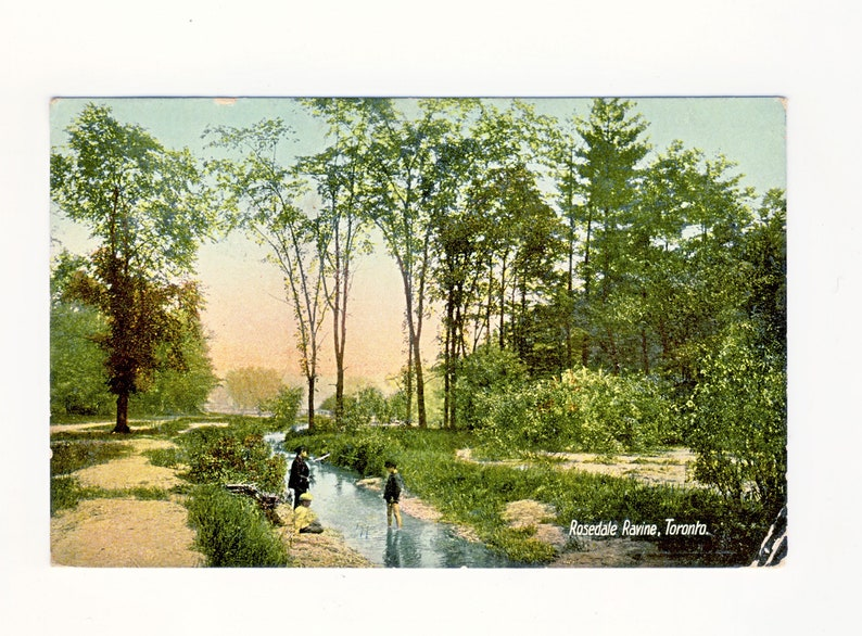 C260 Rosedale Ravine Toronto Ontario