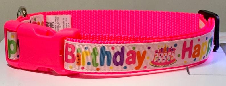 Happy Birthday  Pink Dog Collar image 0
