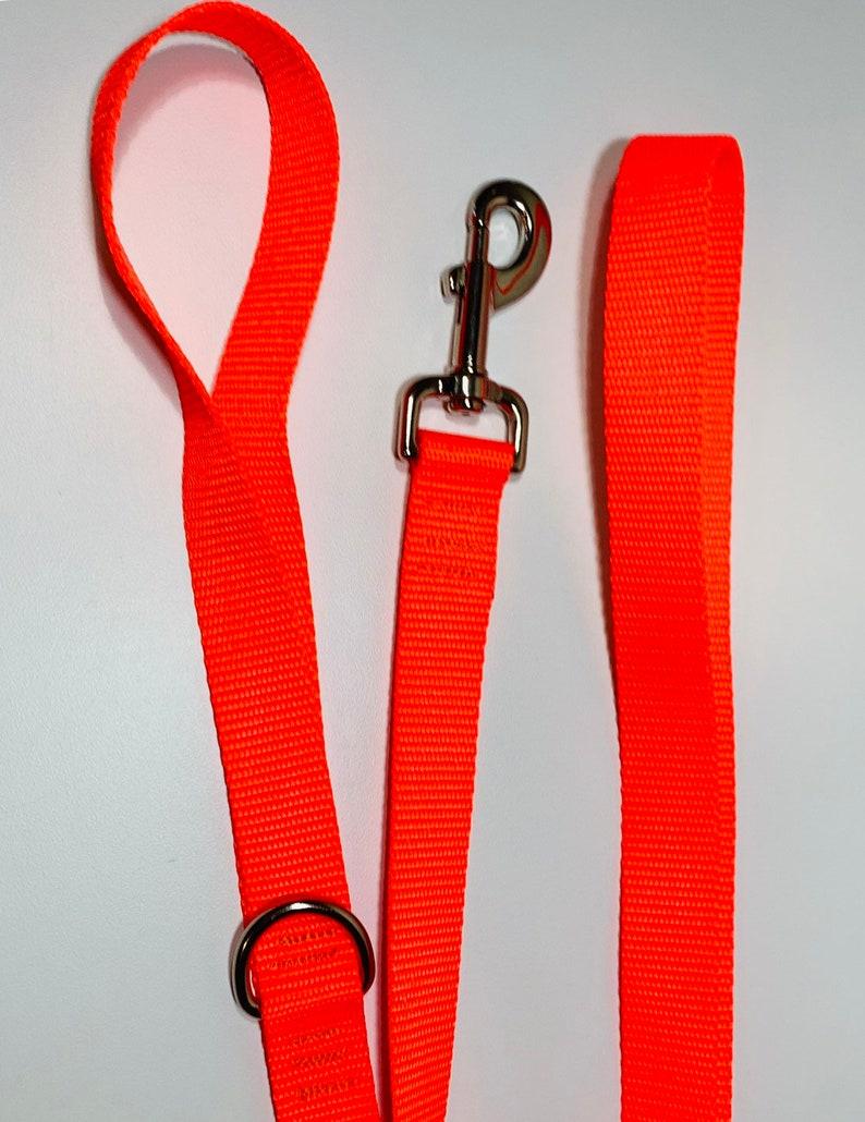 Hot Orange Dog Leash image 0