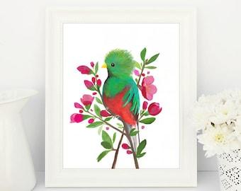 Quetzal Painting, Green Bird Print, Bird Watercolour Painting, Bird Illustration, Quince Flowers, Nursery Wall Art, Printable Art, Dorm Art