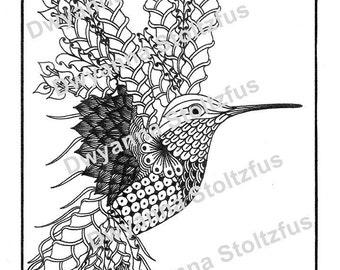 Hummingbird coloring   Etsy