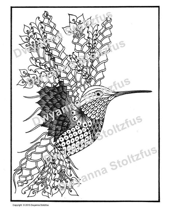 Hummingbird Coloring Page JPG